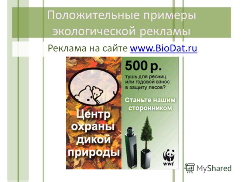 Положительные примеры экологической рекламы Реклама на сайте www.BioDat.ruwww.BioDat.ru