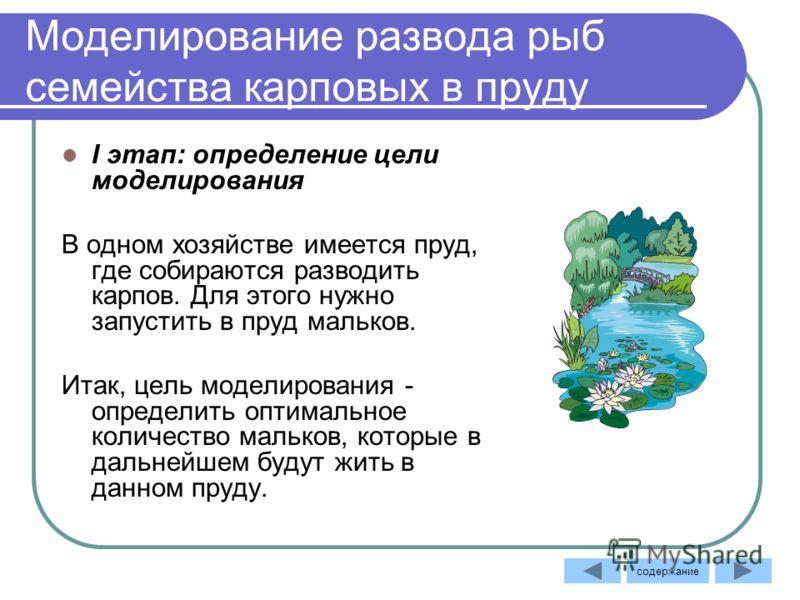 Моделирование развода рыб семейства карповых в пруду I этап: определение цели моделирования В одном хозяйстве имеется пруд, где собираются разводить карпов. Для этого нужно запустить в пруд мальков. Итак, цель моделирования - определить оптимальное к