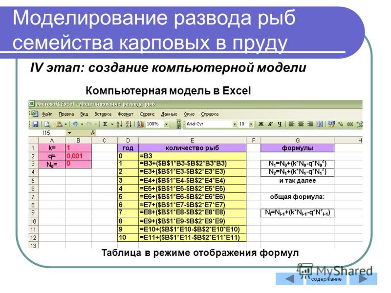 Моделирование развода рыб семейства карповых в пруду Таблица в режиме отображения формул Компьютерная модель в Excel IV этап: создание компьютерной модели содержание