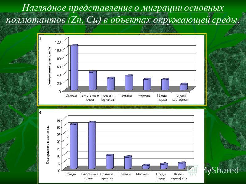 Наглядное представление о миграции основных поллютантов (Zn, Cu) в объектах окружающей среды.
