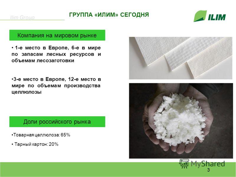 3 1-е место в Европе, 6-е в мире по запасам лесных ресурсов и объемам лесозаготовки 3-е место в Европе, 12-е место в мире по объемам производства целлюлозы Товарная целлюлоза: 65% Тарный картон: 20% Доли российского рынка Компания на мировом рынке ГР