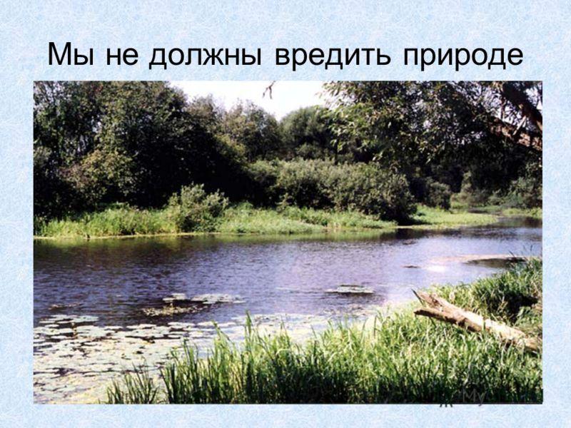Мы не должны вредить природе