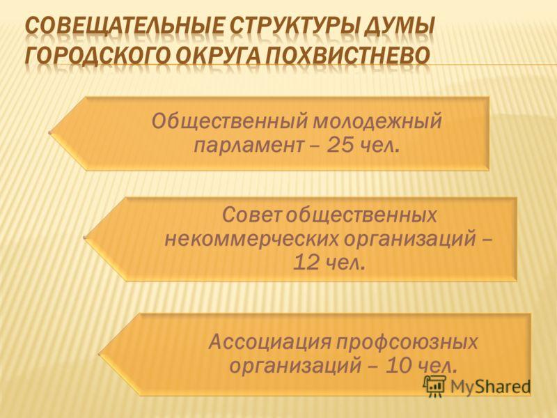 Общественный молодежный парламент – 25 чел. Совет общественных некоммерческих организаций – 12 чел. Ассоциация профсоюзных организаций – 10 чел.