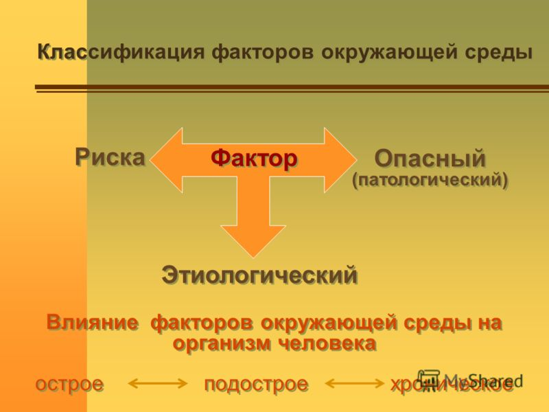 Классификация факторов окружающей среды Этиологический Риска Фактор Опасный (патологический) Опасный (патологический) Влияние факторов окружающей среды на организм человека острое подострое хроническое