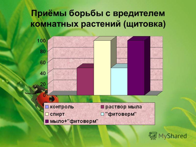 Приёмы борьбы с вредителем комнатных растений (щитовка)