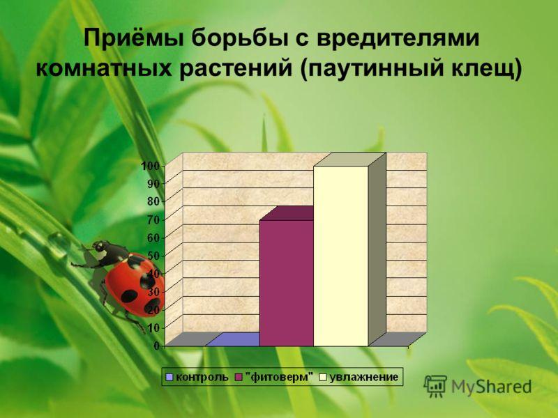 Приёмы борьбы с вредителями комнатных растений (паутинный клещ)