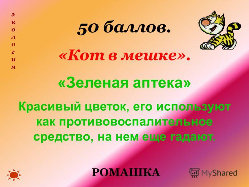 50 баллов. «Кот в мешке». «Зеленая аптека» Красивый цветок, его используют как противовоспалительное средство, на нем еще гадают. экологияэкология РОМАШКА
