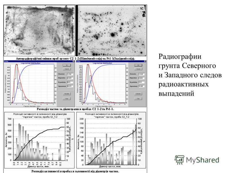Радиографии грунта Северного и Западного следов радиоактивных выпадений