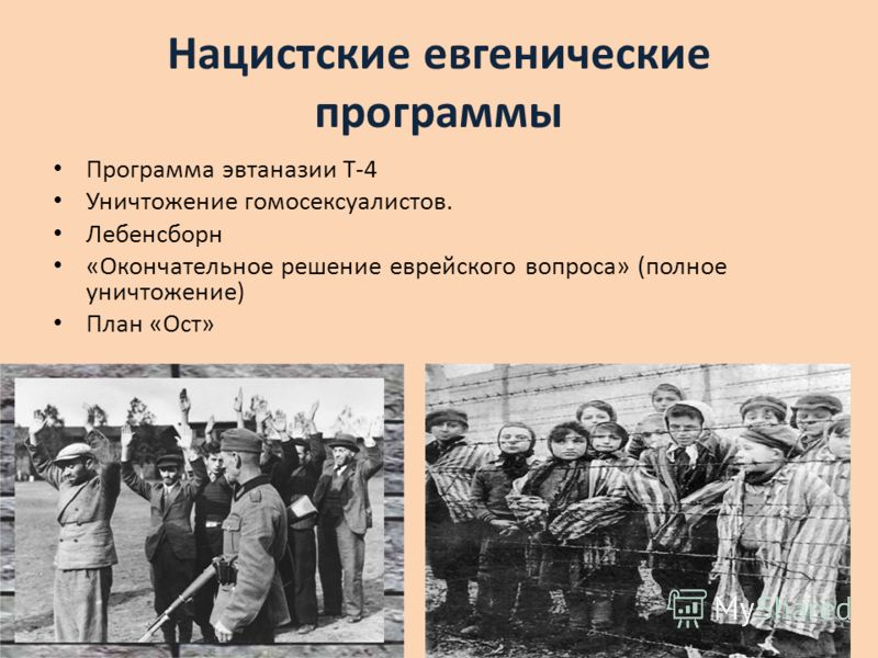 Нацистские евгенические программы Программа эвтаназии Т-4 Уничтожение гомосексуалистов. Лебенсборн «Окончательное решение еврейского вопроса» (полное уничтожение) План «Ост»