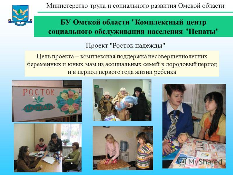 Министерство труда и социального развития Омской области БУ Омской области
