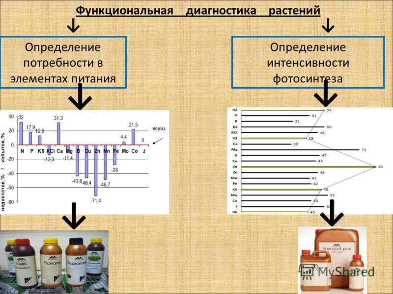 Функциональная диагностика растений Определение потребности в элементах питания Определение интенсивности фотосинтеза