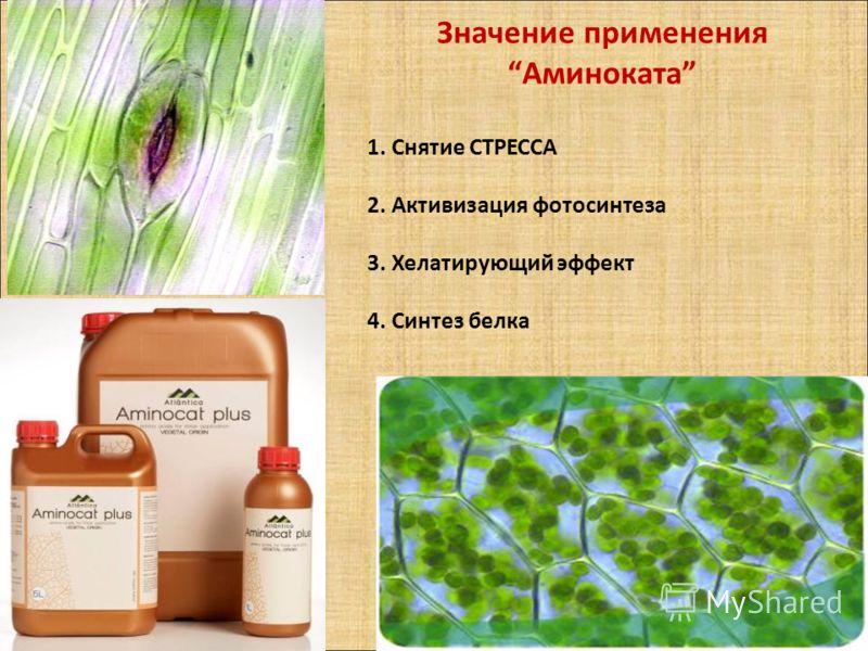 Значение применения Аминоката 1. Снятие СТРЕССА 2. Активизация фотосинтеза 3. Хелатирующий эффект 4. Синтез белка