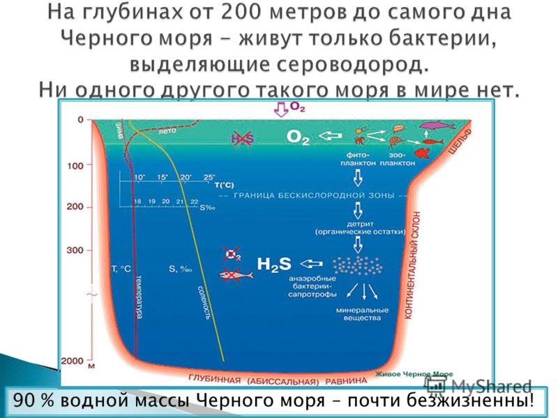 На глубинах от 200 метров до самого дна Черного моря - живут только бактерии, выделяющие сероводород. Ни одного другого такого моря в мире нет. 90 % водной массы Черного моря – почти безжизненны!