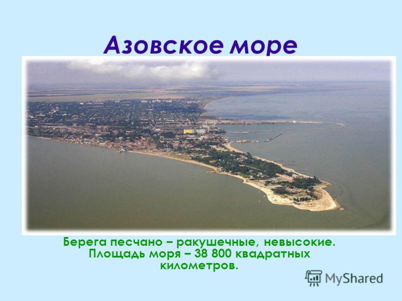 Азовское море Берега песчано – ракушечные, невысокие. Площадь моря – 38 800 квадратных километров.