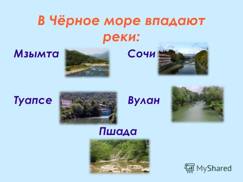 В Чёрное море впадают реки: Мзымта Сочи Туапсе Вулан Пшада