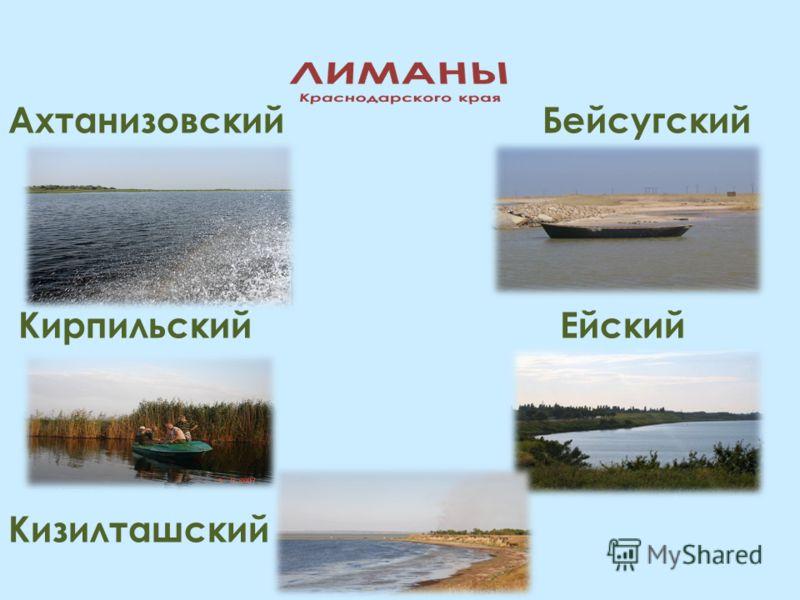Ахтанизовский Бейсугский Кирпильский Ейский Кизилташский