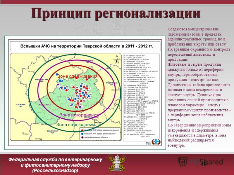 19 Принцип регионализации Зона сдерживания Зона искоренения Зона наблюдения Создаются концентрические (вложенные) зоны в пределах административных границ, но в приближении к кругу или овалу. Их границы охраняются (контроль перемещений животных и прод