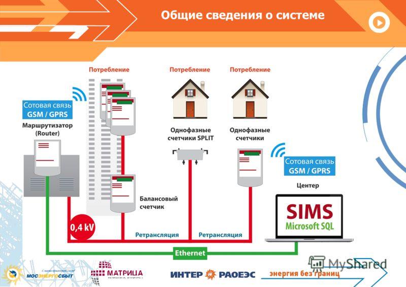 Общие сведения о системе