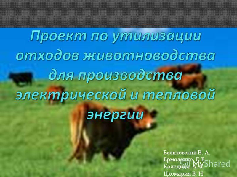Белиловский В. А. Ермоленко Г. В. Каледина А. С. Цхомария В. Н.