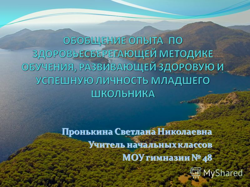 Пронькина Светлана Николаевна Учитель начальных классов МОУ гимназии 48