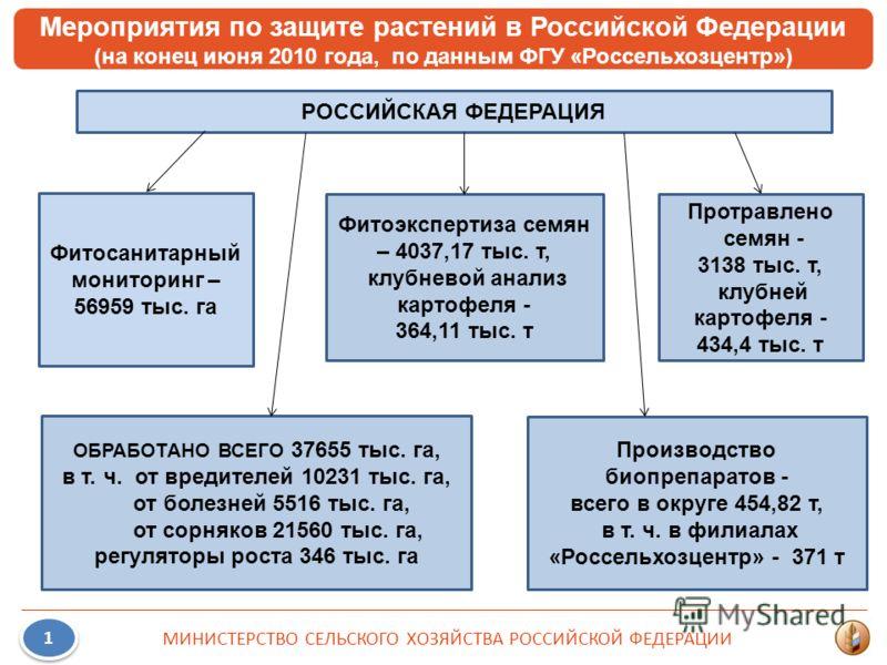 Мероприятия по защите растений в Российской Федерации (на конец июня 2010 года, по данным ФГУ «Россельхозцентр») 1 1 МИНИСТЕРСТВО СЕЛЬСКОГО ХОЗЯЙСТВА РОССИЙСКОЙ ФЕДЕРАЦИИ РОССИЙСКАЯ ФЕДЕРАЦИЯ Фитосанитарный мониторинг – 56959 тыс. га ОБРАБОТАНО ВСЕГО