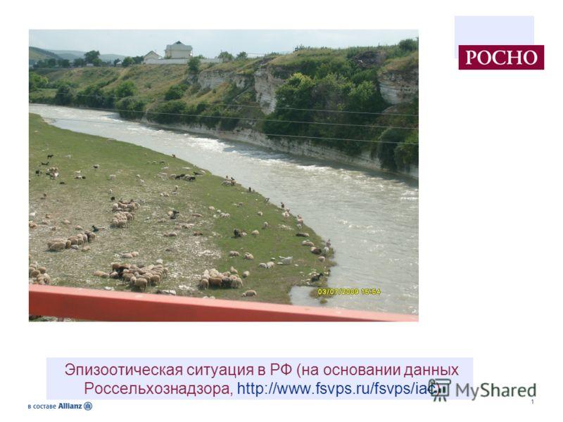 1 Эпизоотическая ситуация в РФ (на основании данных Россельхознадзора, http://www.fsvps.ru/fsvps/iac)