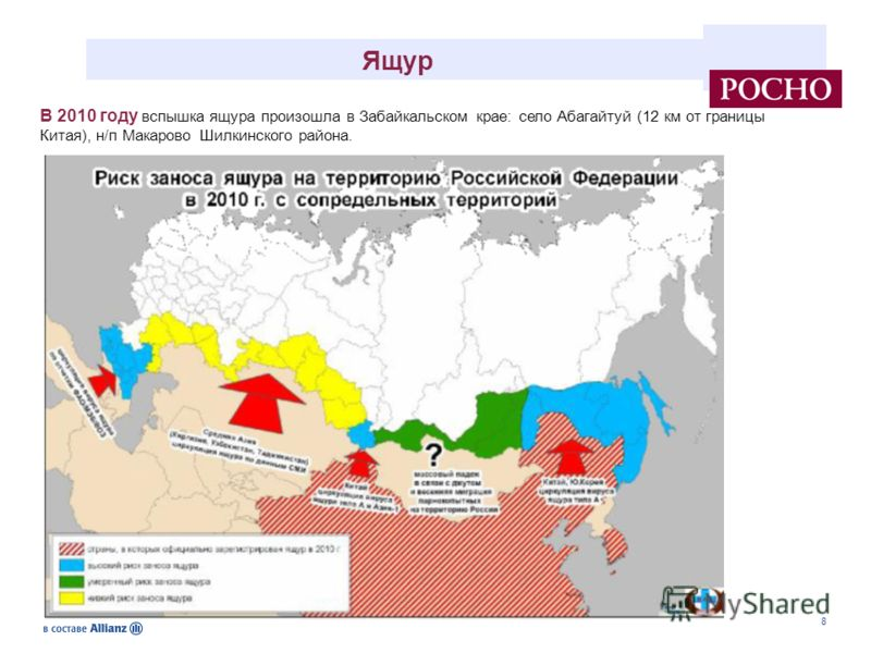 8 Ящур В 2010 году вспышка ящура произошла в Забайкальском крае: село Абагайтуй (12 км от границы Китая), н/п Макарово Шилкинского района.