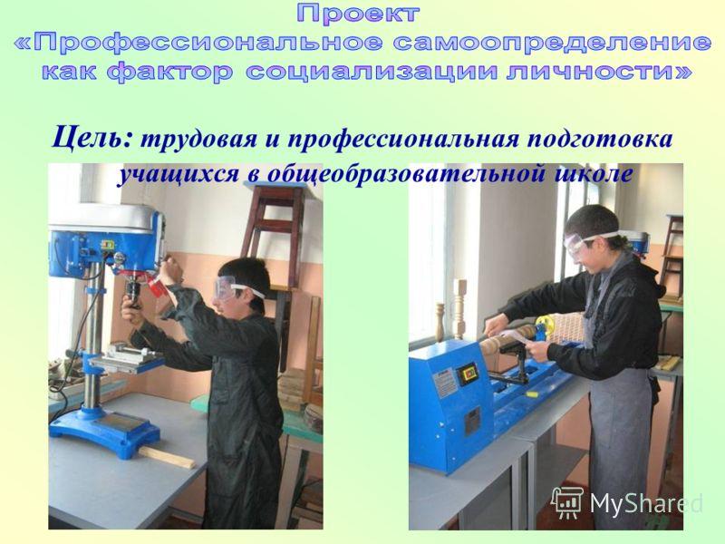 Цель: трудовая и профессиональная подготовка учащихся в общеобразовательной школе