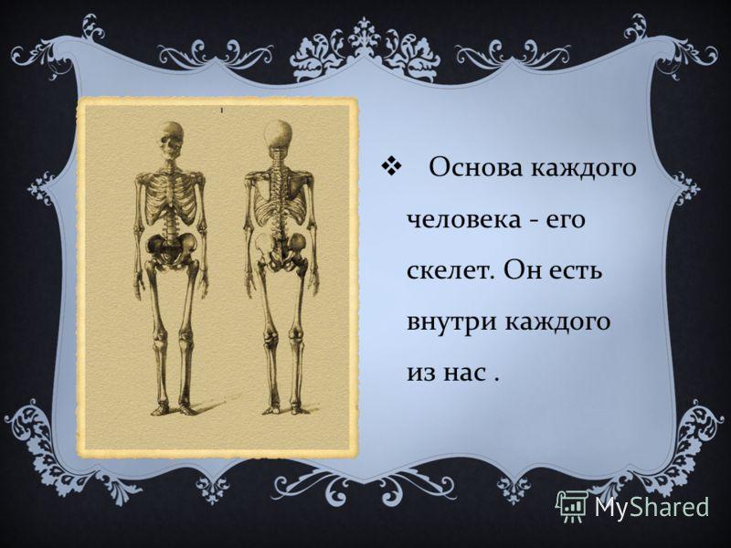 Основа каждого человека - его скелет. Он есть внутри каждого из нас.
