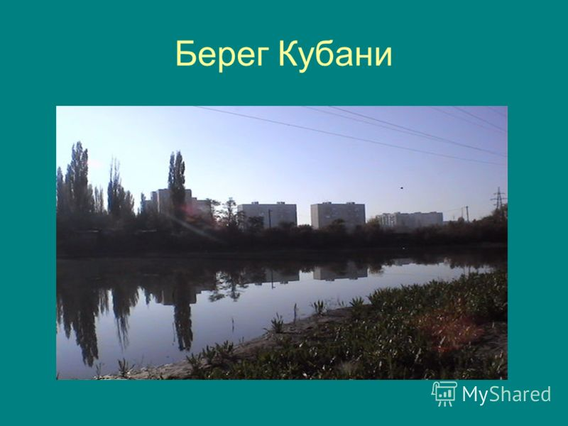 Берег Кубани