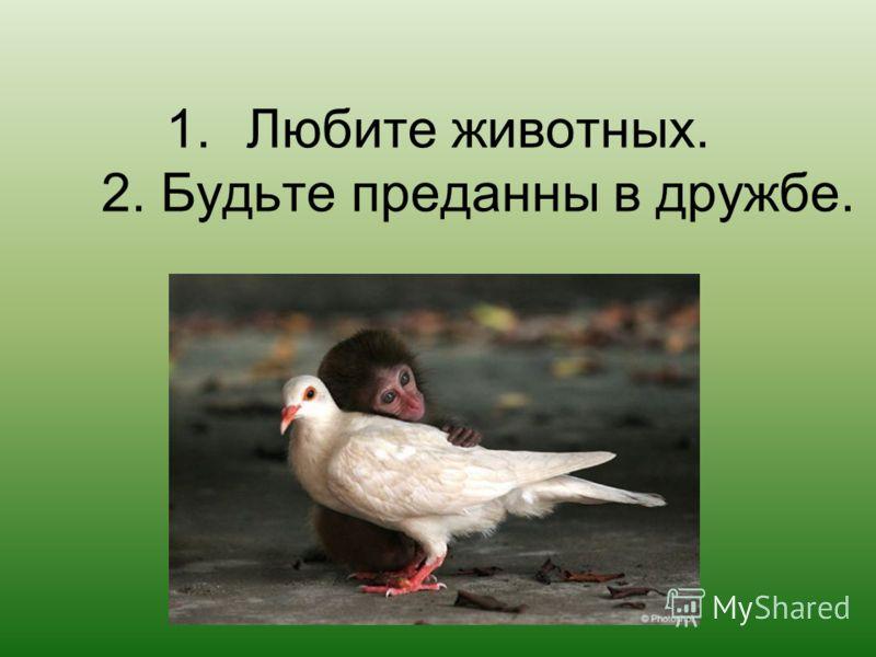 1.Любите животных. 2. Будьте преданны в дружбе.