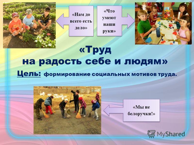 «Нам до всего есть дело» «Мы не белоручки!» «Что умеют наши руки» Цель: формирование социальных мотивов труда. «Труд на радость себе и людям»