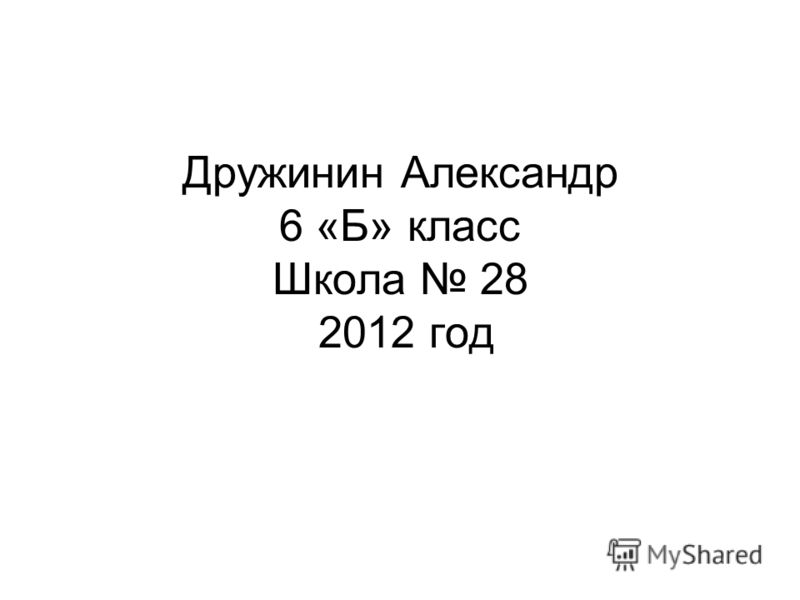 Дружинин Александр 6 «Б» класс Школа 28 2012 год