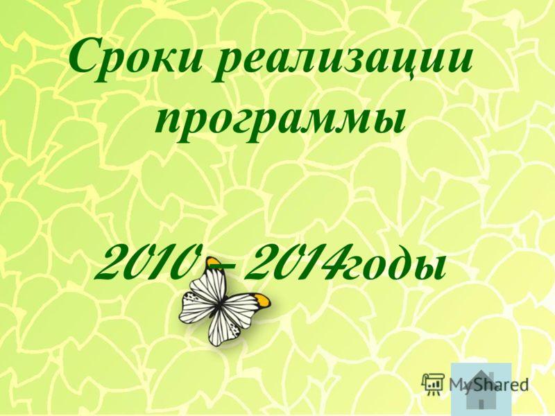 Сроки р еализации программы 2010 – 2014 годы