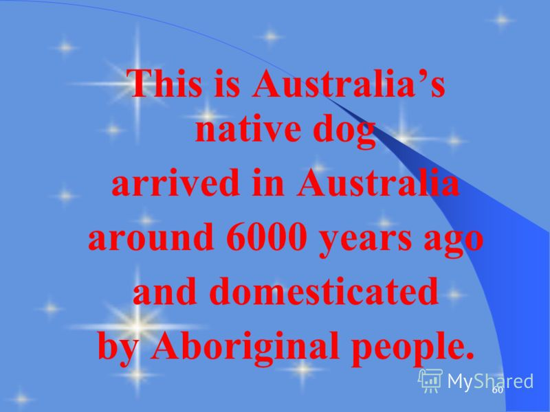 59 This Australian animal you can find on the State Emblem