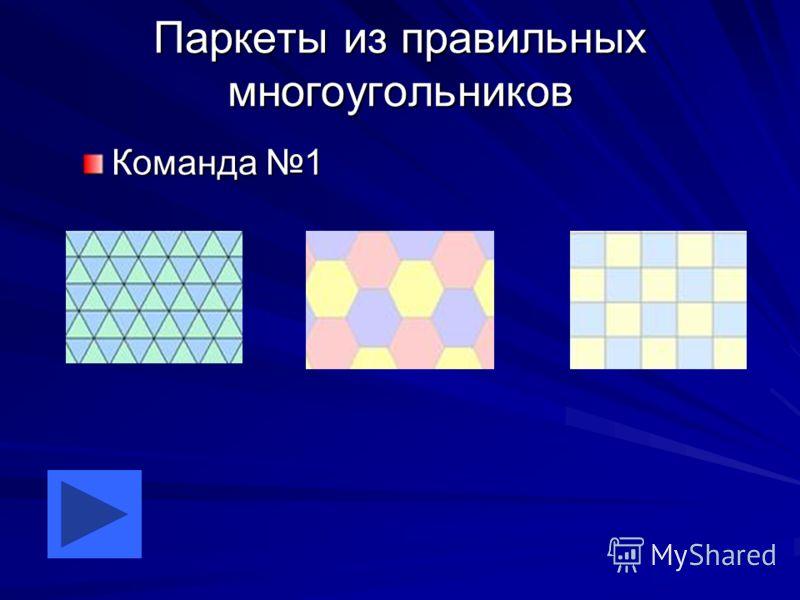 Паркеты из правильных многоугольников Команда 1