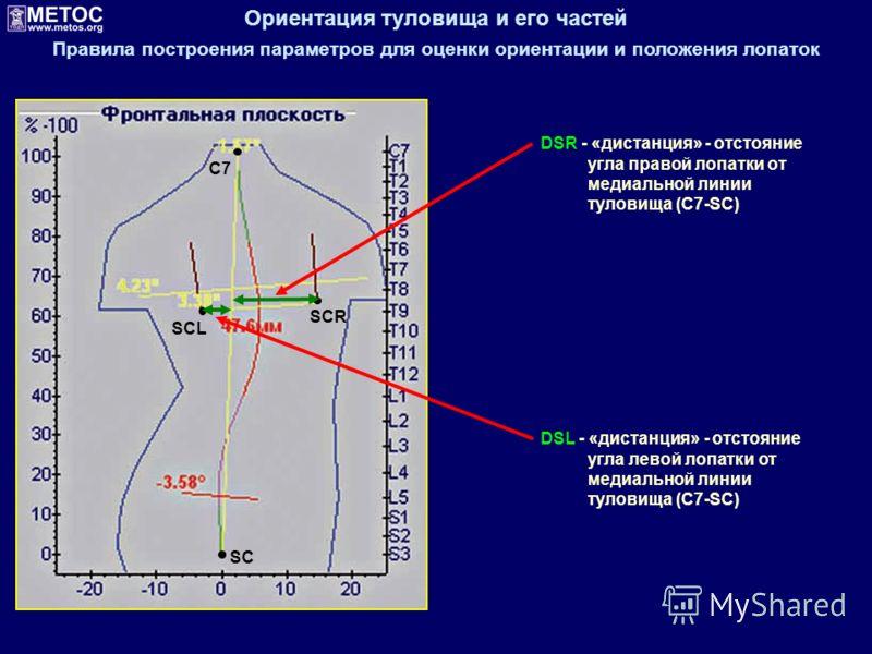 Ориентация туловища и его частей Правила построения параметров для оценки ориентации и положения лопаток SC C7 SCL SCR DSL - «дистанция» - отстояние угла левой лопатки от медиальной линии туловища (С7-SC) DSR - «дистанция» - отстояние угла правой лоп