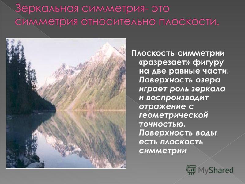 Плоскость симметрии «разрезает» фигуру на две равные части. Поверхность озера играет роль зеркала и воспроизводит отражение с геометрической точностью. Поверхность воды есть плоскость симметрии