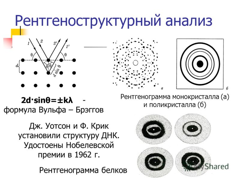 Рентгеноструктурный анализ 2d·sinθ=±kλ - формула Вульфа – Брэггов Рентгенограмма монокристалла (а) и поликристалла (б) Рентгенограмма белков Дж. Уотсон и Ф. Крик установили структуру ДНК. Удостоены Нобелевской премии в 1962 г.
