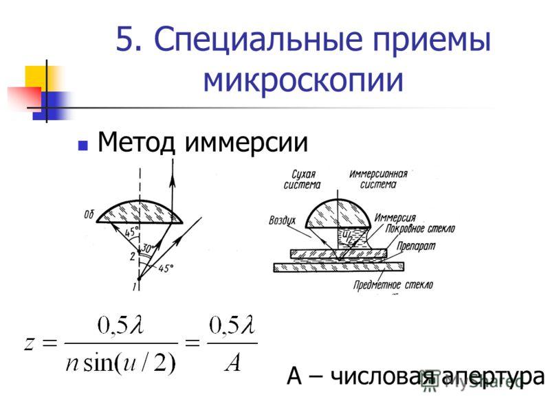 5. Специальные приемы микроскопии Метод иммерсии А – числовая апертура