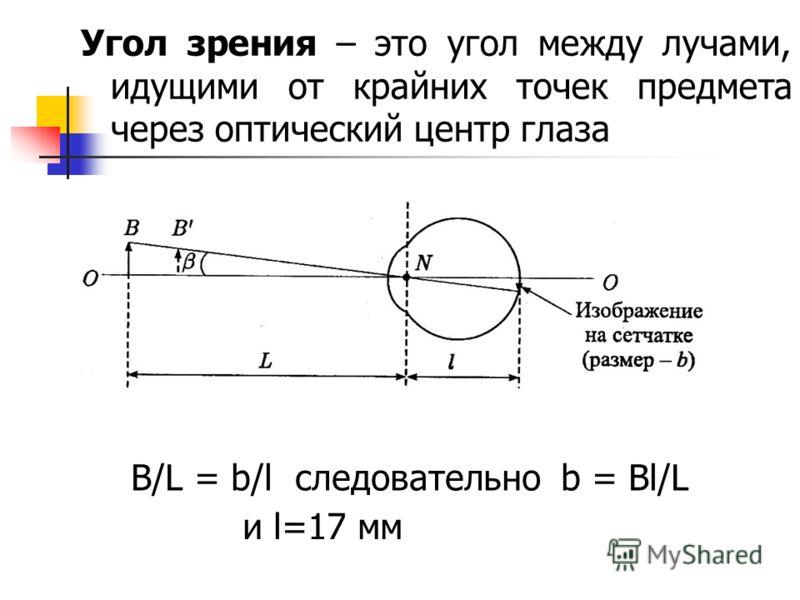 Угол зрения – это угол между лучами, идущими от крайних точек предмета через оптический центр глаза B/L = b/l следовательно b = Bl/L и l=17 мм
