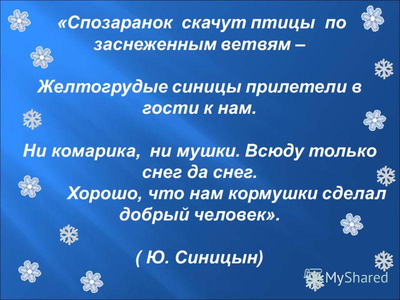 « Спозаранок скачут птицы по заснеженным ветвям – Желтогрудые синицы прилетели в гости к нам. Ни комарика, ни мушки. Всюду только снег да снег. Хорошо, что нам кормушки сделал добрый человек ». ( Ю. Синицын )