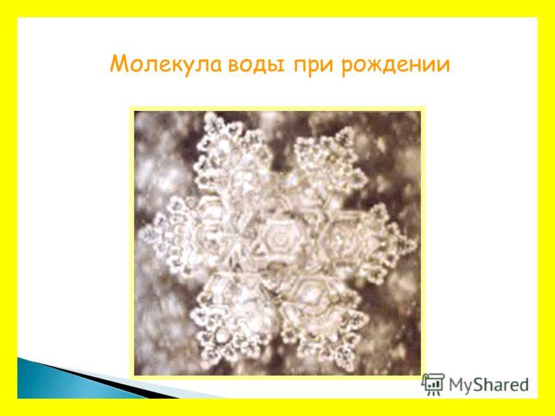 Молекула воды при рождении