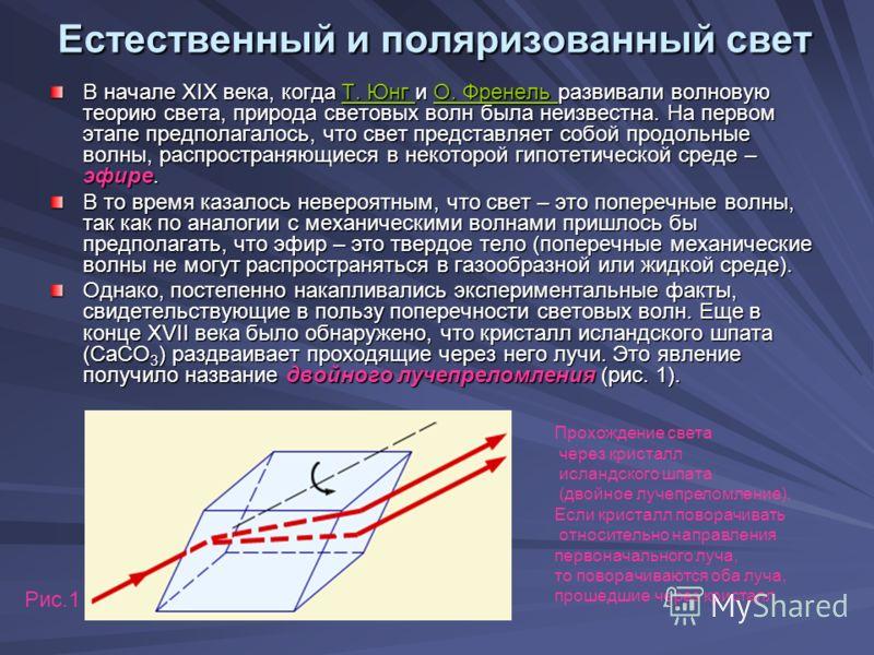 В начале XIX века, когда Т. Юнг и О. Френель развивали волновую теорию света, природа световых волн была неизвестна. На первом этапе предполагалось, что свет представляет собой продольные волны, распространяющиеся в некоторой гипотетической среде – э