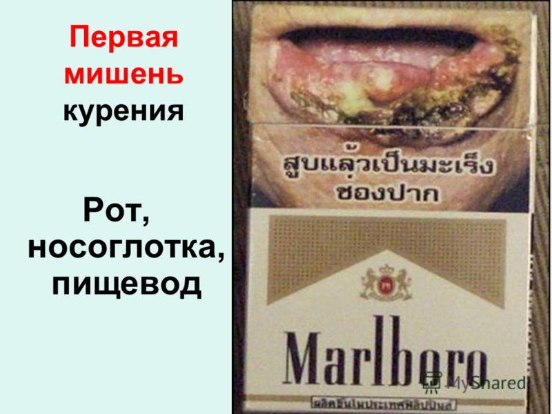 Первая мишень курения Рот, носоглотка, пищевод