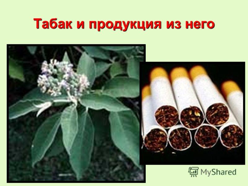 Табак и продукция из него