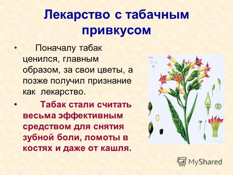 Лекарство с табачным привкусом Поначалу табак ценился, главным образом, за свои цветы, а позже получил признание как лекарство. Табак стали считать весьма эффективным средством для снятия зубной боли, ломоты в костях и даже от кашля.