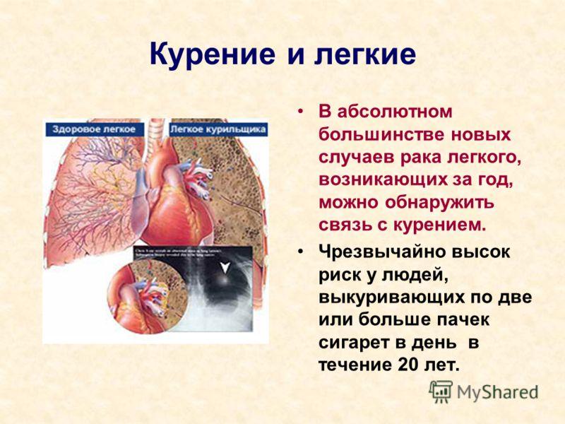 Курение и легкие В абсолютном большинстве новых случаев рака легкого, возникающих за год, можно обнаружить связь с курением. Чрезвычайно высок риск у людей, выкуривающих по две или больше пачек сигарет в день в течение 20 лет.