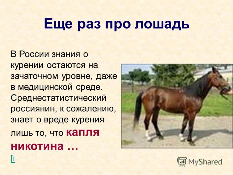 Еще раз про лошадь В России знания о курении остаются на зачаточном уровне, даже в медицинской среде. Среднестатистический россиянин, к сожалению, знает о вреде курения лишь то, что капля никотина … [ i