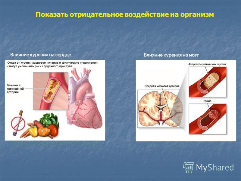 Показать отрицательное воздействие на организм Влияние курения на мозг Влияние курения на сердце